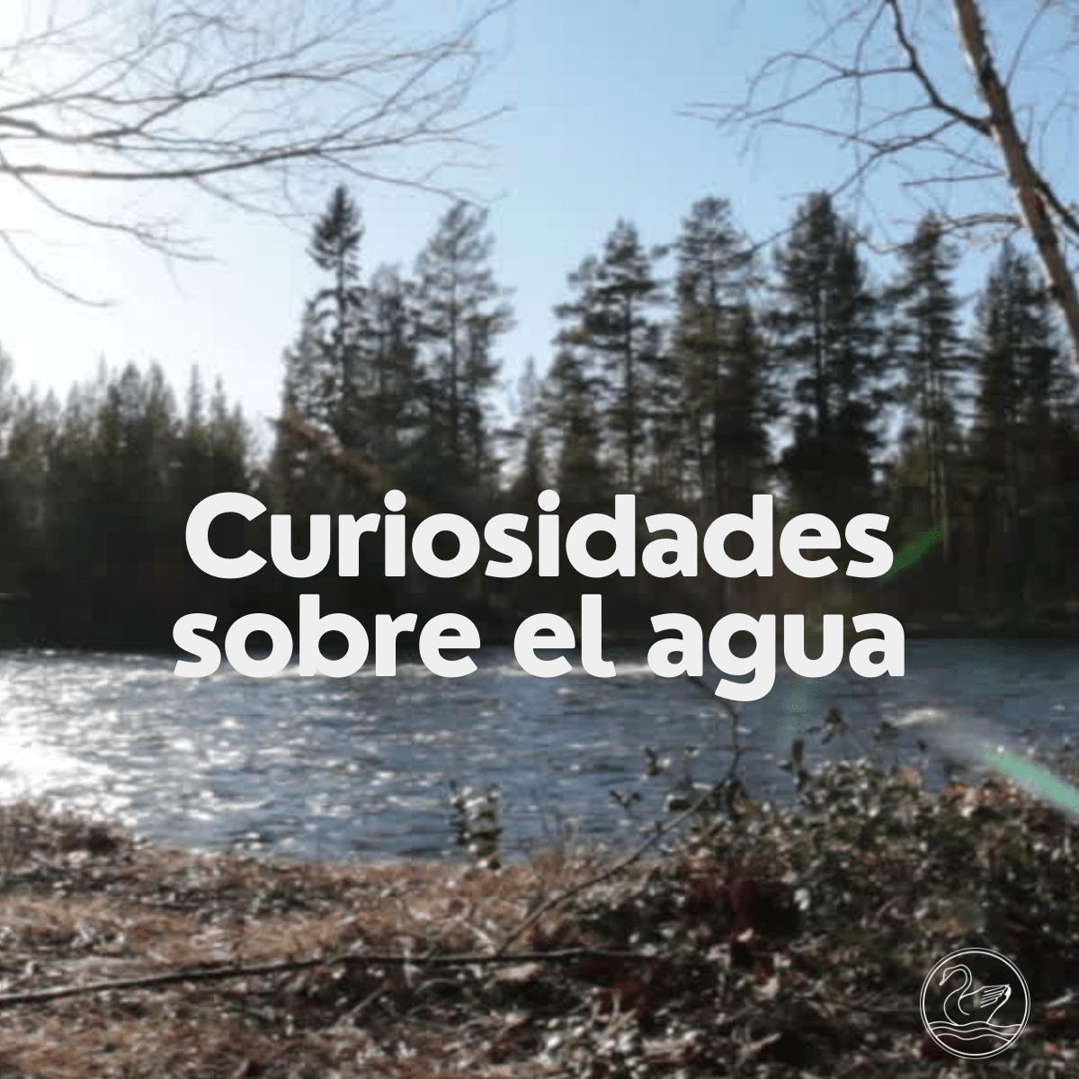Curiosidades sobre el Agua