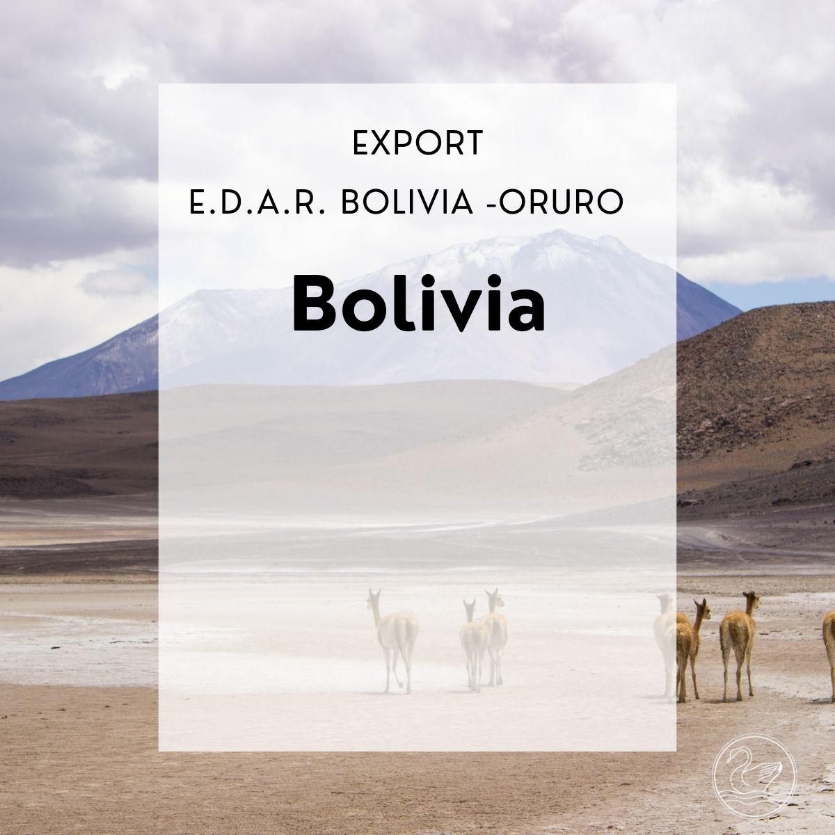Export -Bolivia -Oruro